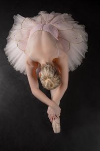 Graceful ballerina bending forward in pink tutuの写真素材 [FYI00002520]