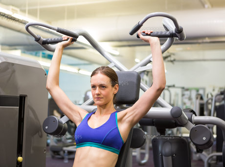 Fit focused brunette using weights machine for armsの写真素材 [FYI00002533]