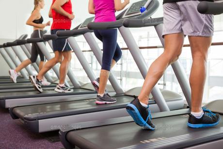 Row of people on treadmillsの写真素材 [FYI00002569]