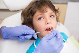 Pediatric dentist examining a little boys teeth in the dentists chairの素材 [FYI00002749]