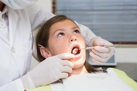 Pediatric dentist examining a little girls teeth in the dentists chairの写真素材 [FYI00002756]