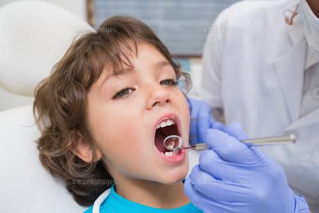 Pediatric dentist examining a little boys teeth in the dentists chairの素材 [FYI00002762]