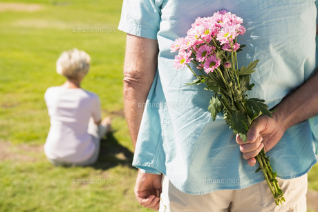 Senior man hiding flowers behind his backの写真素材 [FYI00002815]