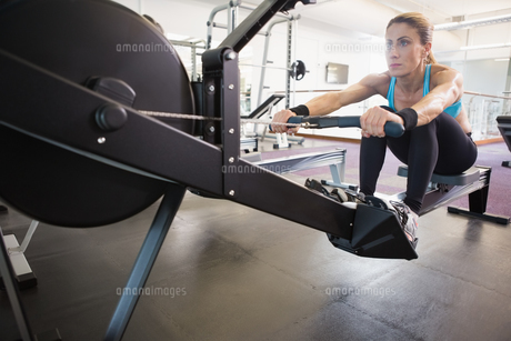 Woman working on fitness machine at gymの写真素材 [FYI00003030]