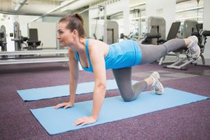 Fit brunette doing pilates on exercise matの写真素材 [FYI00003284]