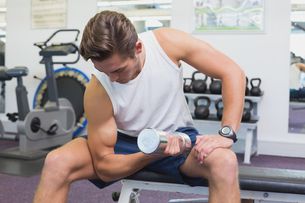 Fit man lifting dumbbells sitting on the benchの写真素材 [FYI00003299]