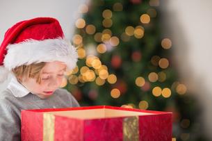 Child opening his christmas presentの写真素材 [FYI00003552]