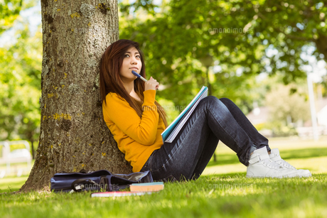Female student with books sitting against tree in parkの写真素材 [FYI00003571]