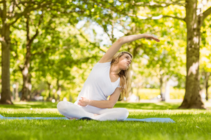 Fit blonde doing yoga in the parkの写真素材 [FYI00003631]