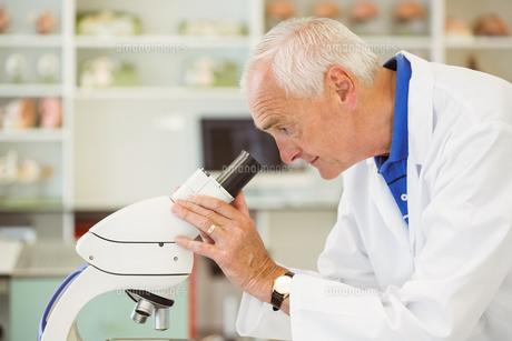 Senior scientist looking through microscopeの写真素材 [FYI00003662]