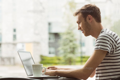 Smiling student using laptop in cafeの写真素材 [FYI00003675]