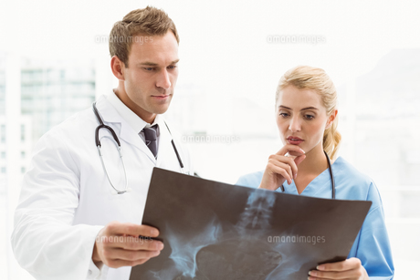 Male and female doctors examining x-rayの写真素材 [FYI00003745]