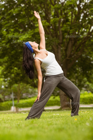 Cheerful brown hair doing yoga on grassの写真素材 [FYI00003815]