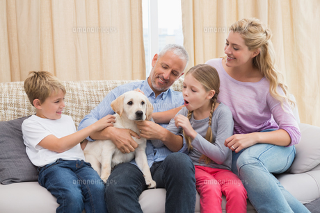 Parents with their children on sofa playing with puppyの写真素材 [FYI00003895]