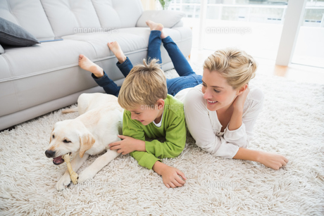 Happy mother and son with puppyの写真素材 [FYI00003908]