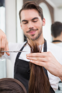 Handsome hair stylist cutting hairの写真素材 [FYI00004155]