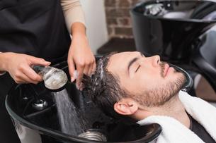Hair stylist washing mans hairの写真素材 [FYI00004160]