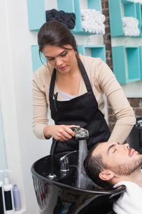 Hair stylist washing mans hairの写真素材 [FYI00004161]
