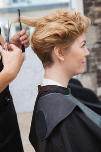 Hairdresser cutting a customers hairの写真素材 [FYI00004184]