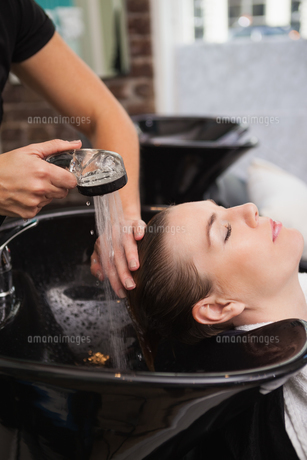 Customer getting their hair washedの写真素材 [FYI00004197]