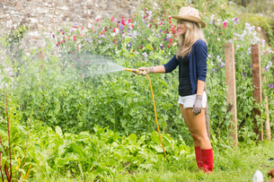Cute blonde gardening on sunny dayの写真素材 [FYI00004333]