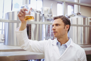 Focused scientist examining beaker with beerの写真素材 [FYI00004429]