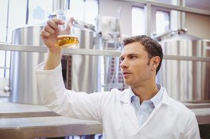 Focused scientist examining beaker with beerの写真素材 [FYI00004429]