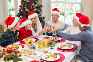 Multi generation family in santa hat toasting each otherの写真素材 [FYI00004669]