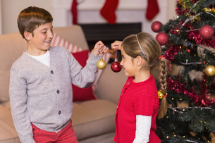 Brother and sister decorating the christmas tree with baublesの写真素材 [FYI00004680]