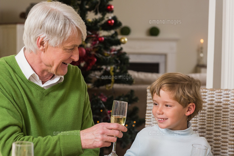Grandfather showing glass of champagne to his grandsonの写真素材 [FYI00004702]