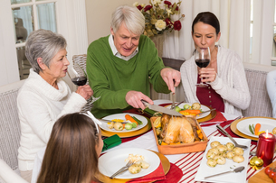 Grandfather carving chicken while women drinking red wineの写真素材 [FYI00004705]