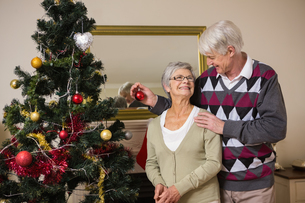 Senior couple decorating their christmas treeの素材 [FYI00004716]