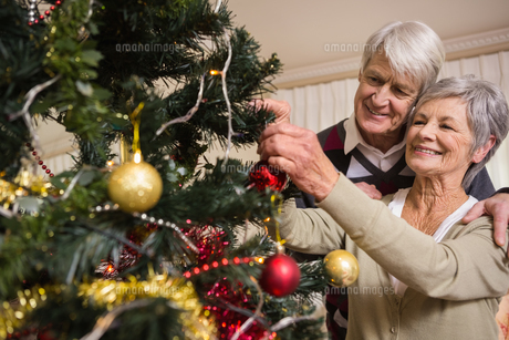 Senior couple decorating their christmas treeの素材 [FYI00004719]