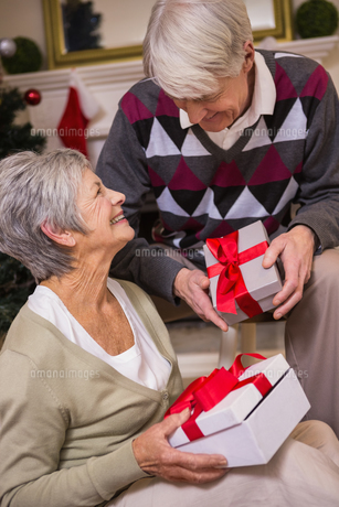 Senior couple sitting beside their christmas treeの写真素材 [FYI00004723]
