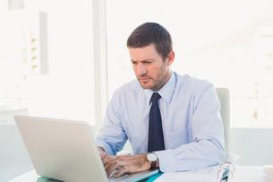 Businessman using his laptopの素材 [FYI00004792]