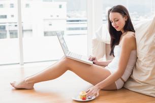 Pretty brunette using laptop sitting on floorの写真素材 [FYI00004848]