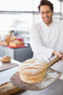 Baker showing freshly baked loafの写真素材 [FYI00004976]