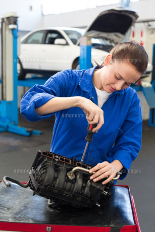 Mechanic working on an engineの写真素材 [FYI00005044]