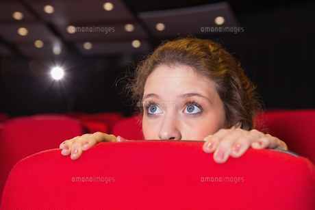 Young woman watching a scary filmの素材 [FYI00005426]