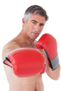 Fit man punching with boxing glovesの写真素材 [FYI00005692]