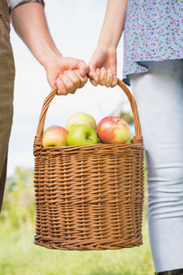 Couple holding basket of applesの写真素材 [FYI00005715]