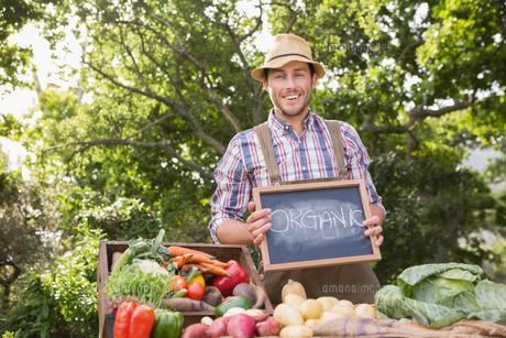 Farmer selling organic veg at marketの写真素材 [FYI00005761]