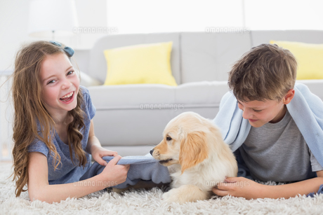 Siblings playing with puppy on rugの写真素材 [FYI00005869]