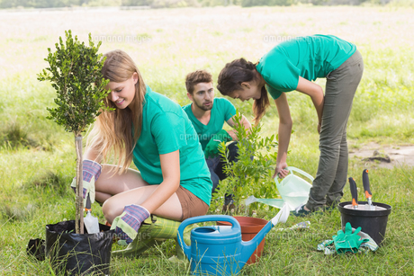 Happy friends gardening for the communityの素材 [FYI00005882]
