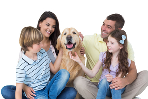 Family stroking dogの素材 [FYI00005884]