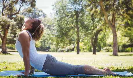 Fit woman doing yoga in the parkの素材 [FYI00006003]