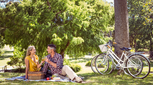 Couple having a picnic in the parkの写真素材 [FYI00006009]