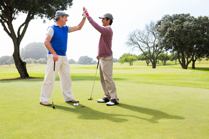Golfing friends high fiving on the holeの写真素材 [FYI00006083]