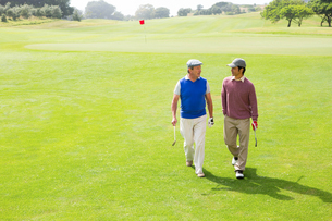 Golfer friends walking and chattingの素材 [FYI00006088]