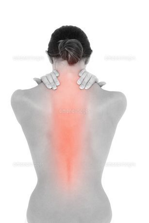 Highlighted neck pain of womanの写真素材 [FYI00006262]